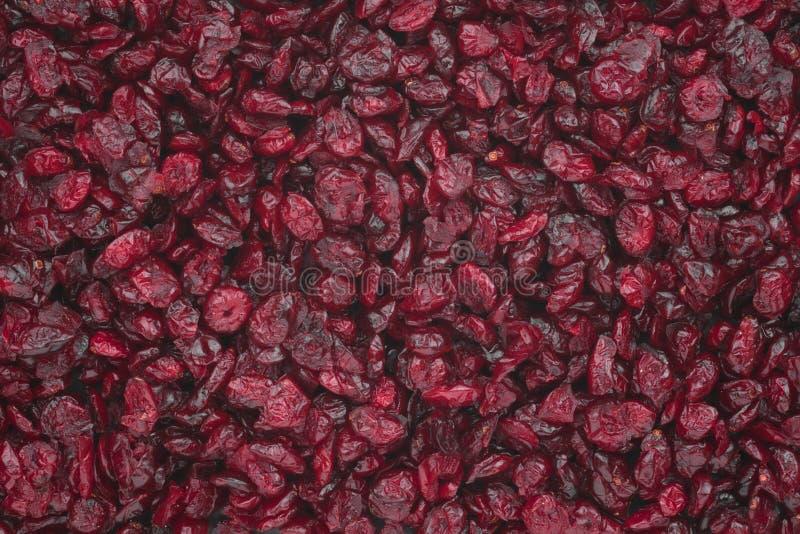 Wysuszeni cranberries zdjęcia royalty free