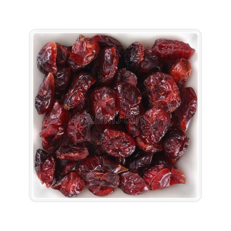 Wysuszeni cranberries w kwadratowym pucharze na białym tle fotografia stock