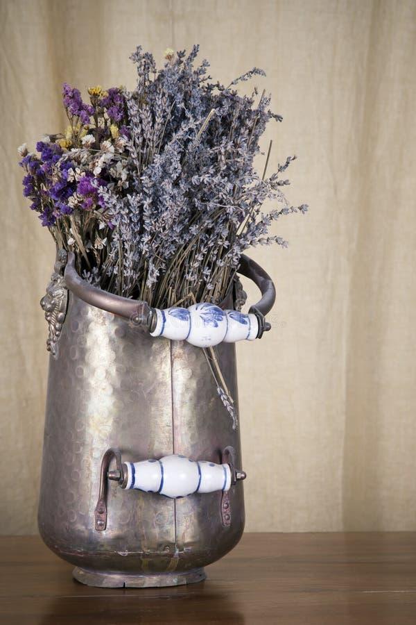 Wysuszeni kwiaty obraz stock
