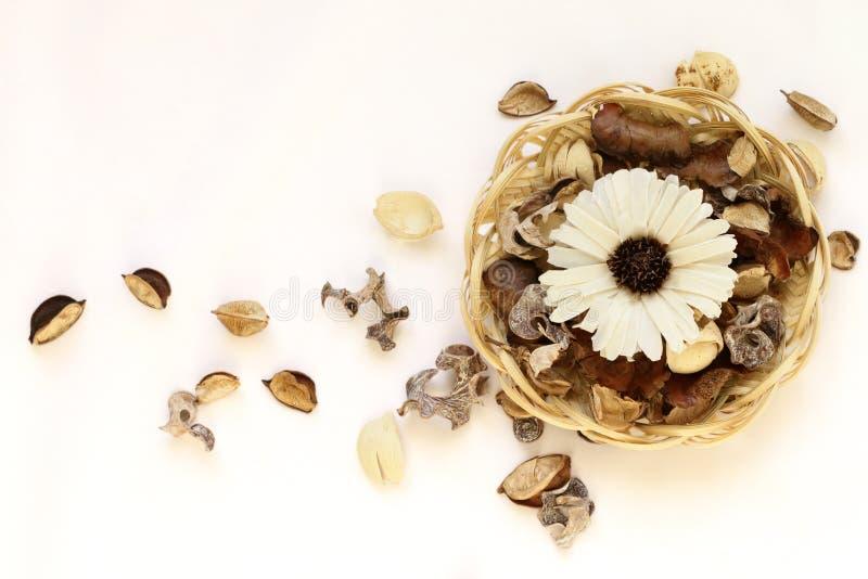 Wysuszeni kwiaty i liście w łozinowym koszu na białym tle zdjęcie royalty free