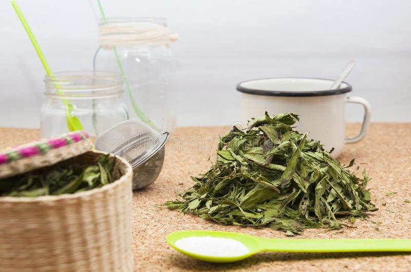 Wysuszeni Stevia liście obraz royalty free