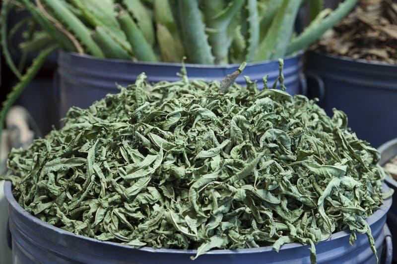 Wysuszeni Stevia rebaudiana liście zdjęcia royalty free