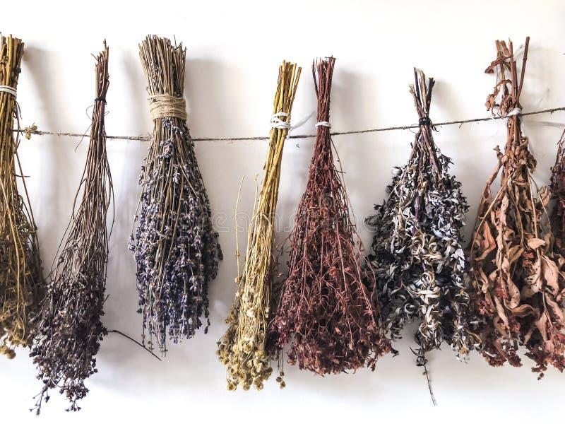 Wysuszeni ziele odskakują w plikach i wieszają na arkanie Use w alternatywnej medycynie, ziołolecznictwo, zdrój, ziołowi kosmetyk obraz stock