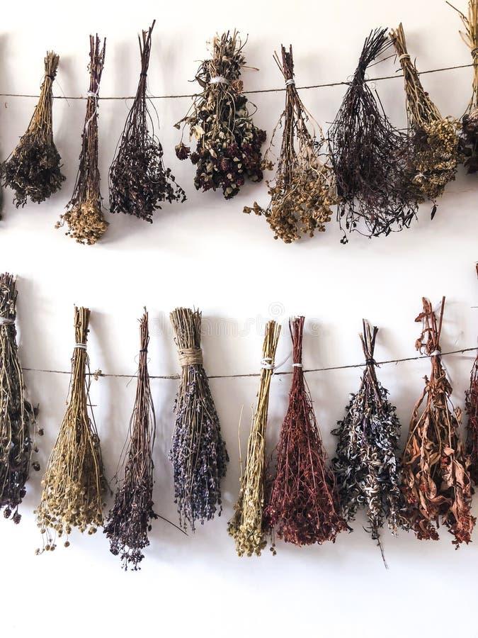 Wysuszeni ziele odskakują w plikach i wieszają na arkanie Use w alternatywnej medycynie, ziołolecznictwo, zdrój, ziołowi kosmetyk zdjęcia stock