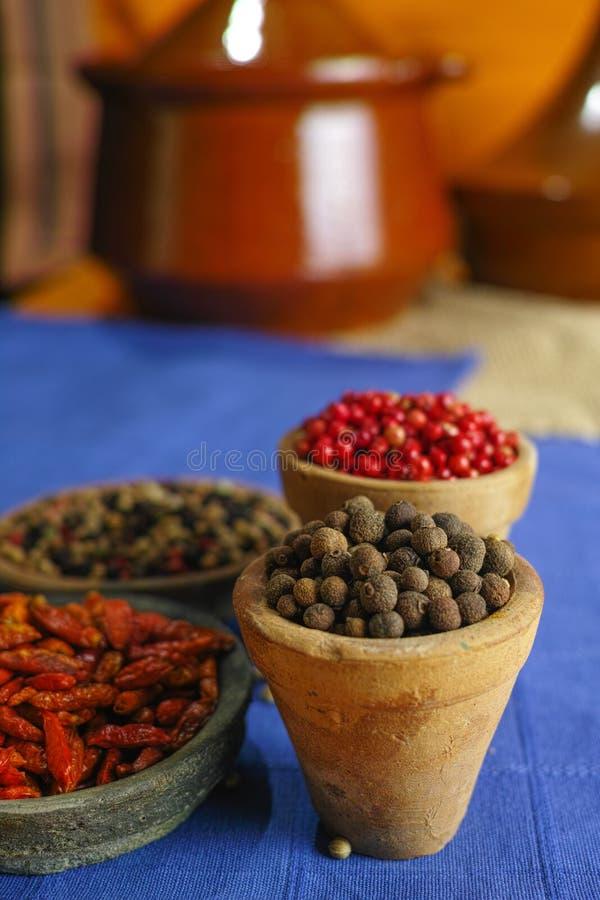 Wysuszona czerwień, gorący chili, czerń, biali pieprze w starych glinianych pucharach wewnątrz fotografia stock