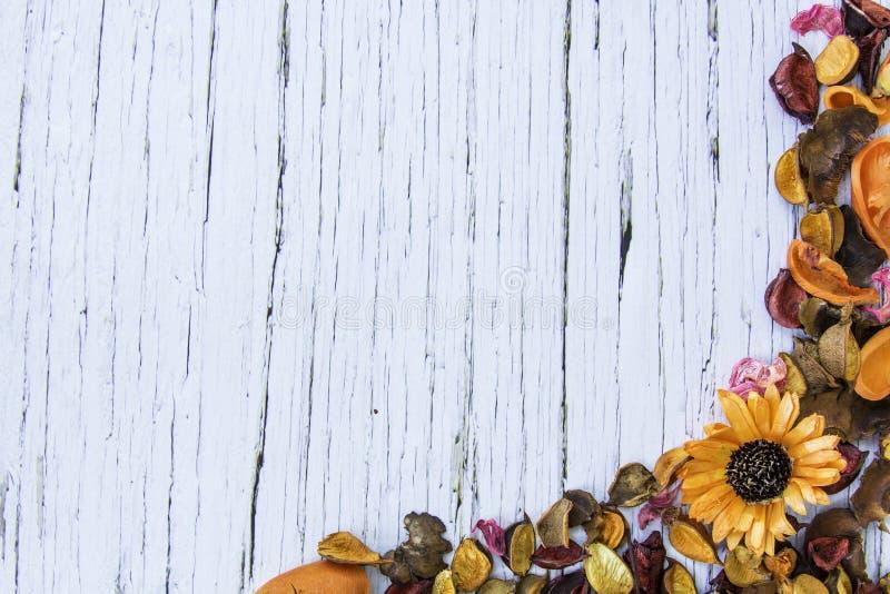 Wysuszona kwiat rama na Błękitnym starym drewnianym tle obrazy royalty free