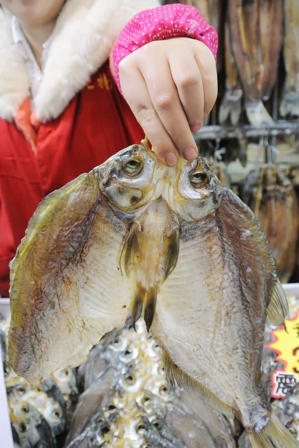 Download Wysuszona ryba zdjęcie stock. Obraz złożonej z żebro - 28974322