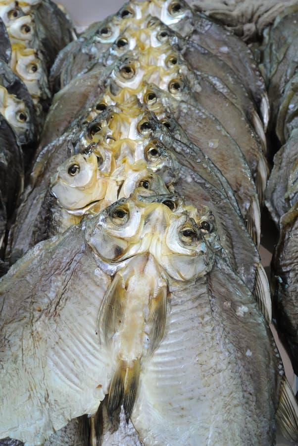 Download Wysuszona ryba zdjęcie stock. Obraz złożonej z posiłek - 28974332