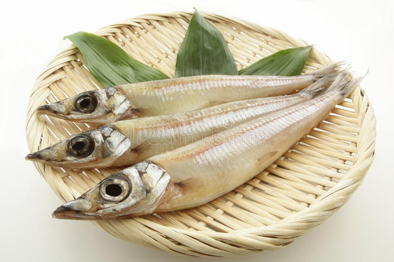 Wysuszona ryba, piaska Borer na colander fotografia stock
