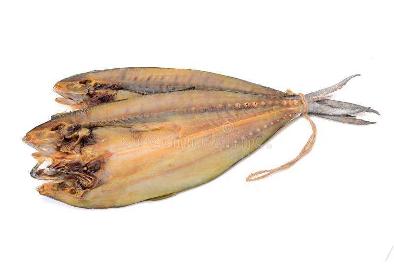 Wysuszona solona ryba od Anyer plaży, Serang, Banten, Indonezja fotografia stock