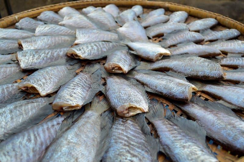 Wysuszona trichogaster ryba przy rynkiem obrazy royalty free
