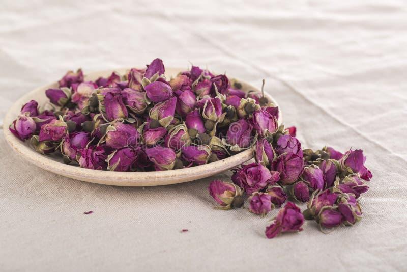 Wysuszone kwiat róże zdjęcie stock