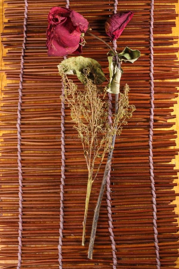 Download Wysuszone róże obraz stock. Obraz złożonej z zakończenie - 57656763