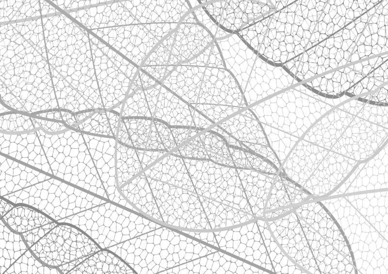 Wysuszonego liść broderii koronki wzoru abstrakcjonistyczny czarny i biały plecy royalty ilustracja