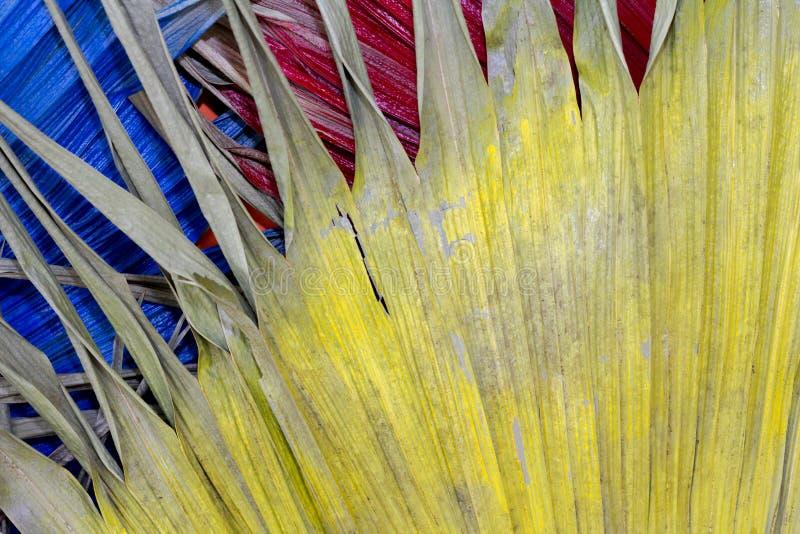 Wysuszonego liścia Żółta rewolucjonistka i błękit Dla tła fotografia stock