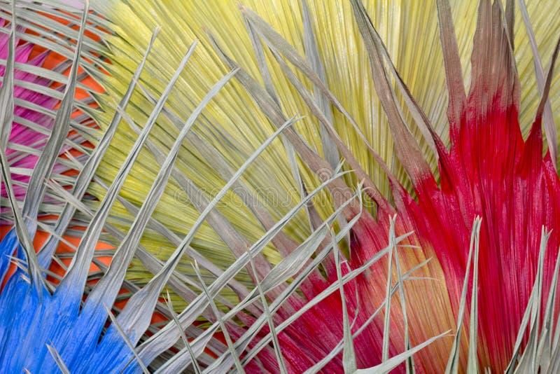 Wysuszonego liścia Żółta rewolucjonistka i błękit Dla tła obraz stock