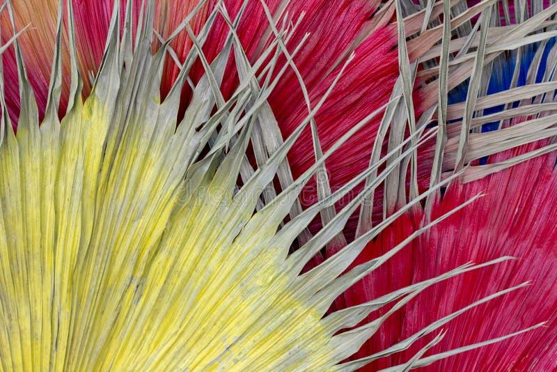 Wysuszonego liścia Żółta rewolucjonistka i błękit Dla tła zdjęcia stock