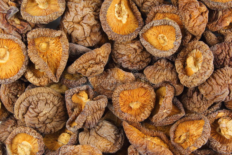 Wysuszonego shiitake pieczarek zbliżenia tła karmowa tekstura zdjęcia royalty free