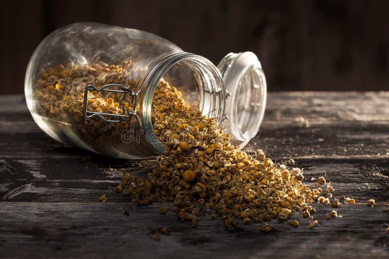 Wysuszony chamomile kwitnie na drewnianym stole zdjęcia royalty free