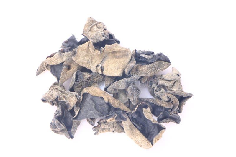 Wysuszony czarny grzyb lub Auricularia polytricha fotografia stock