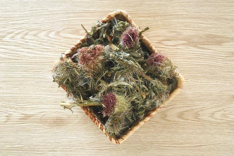 Wysuszony Dojnego osetu ziele w Łozinowym koszu fotografia royalty free