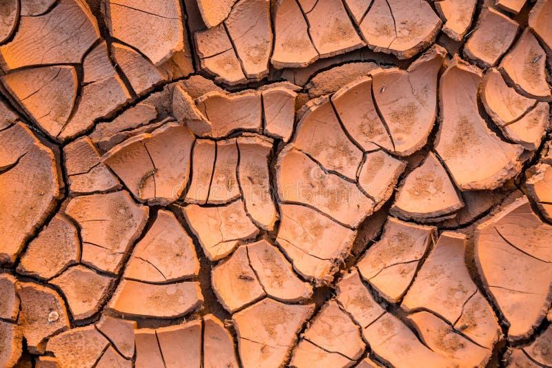 Wysuszony, krakingowy, czerwieni pustynny błoto obrazy royalty free