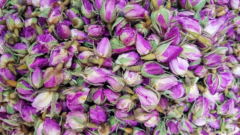 Wysuszony rosebuds tła tekstury zbliżenie fiołkowego rosebud makro- zakończenie up rozsypisko zdjęcia royalty free