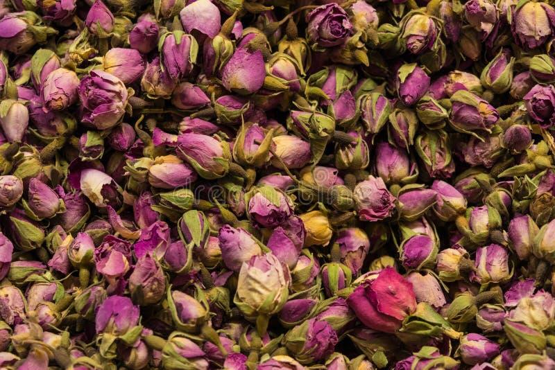 Wysuszony rosebuds tła tekstury zbliżenie fiołkowego rosebud makro- zakończenie up rozsypisko obraz stock
