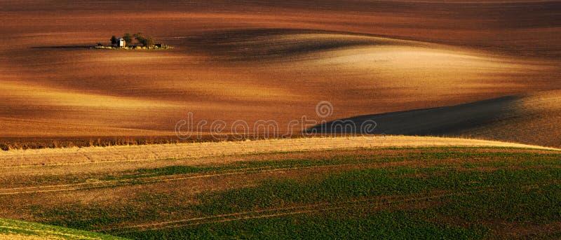 Wyszczególnia scenerię przy Południowym Morawskim polem podczas wiosny, republika czech zdjęcia stock