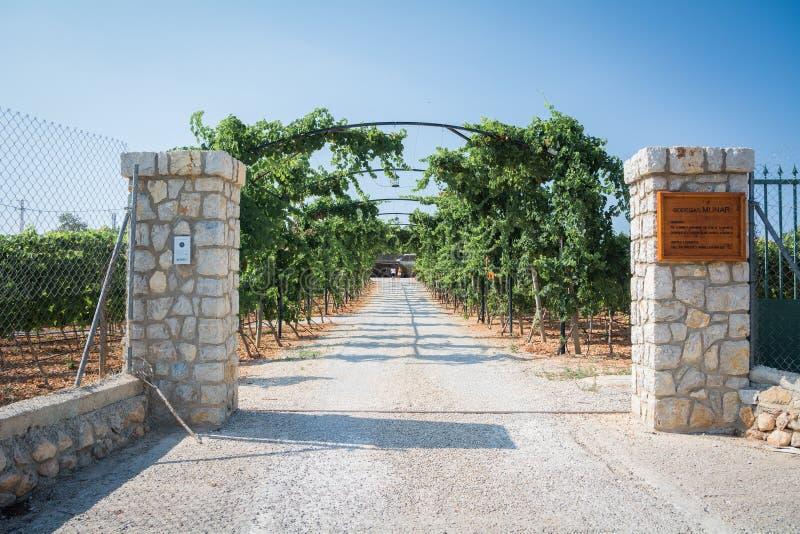 Wytwórnia win Bodegas Munar Inka, Mallorca, Hiszpania fotografia stock