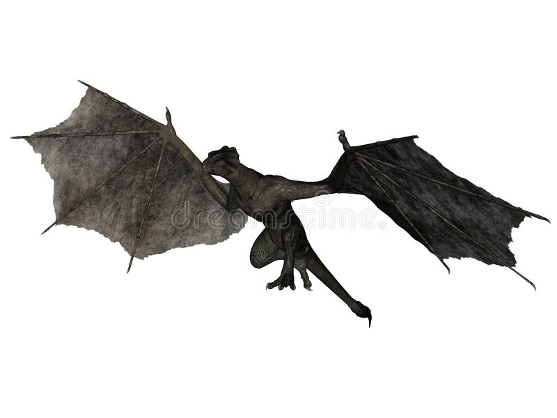 wyvern летания иллюстрация штока