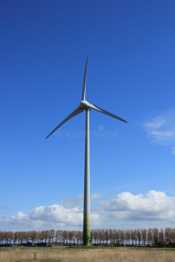 Wywołująca silnik wiatrowy elektryczność obrazy royalty free