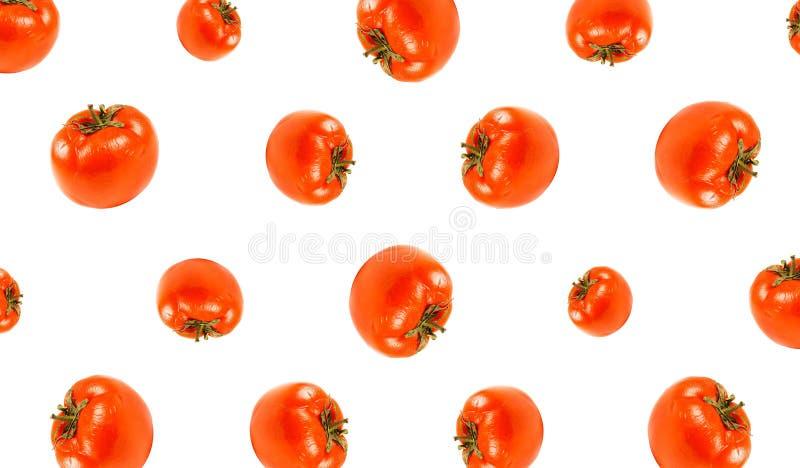 Wzór charłaczy czerwony pomidor z bliska pojedynczy białe tło zdjęcie stock