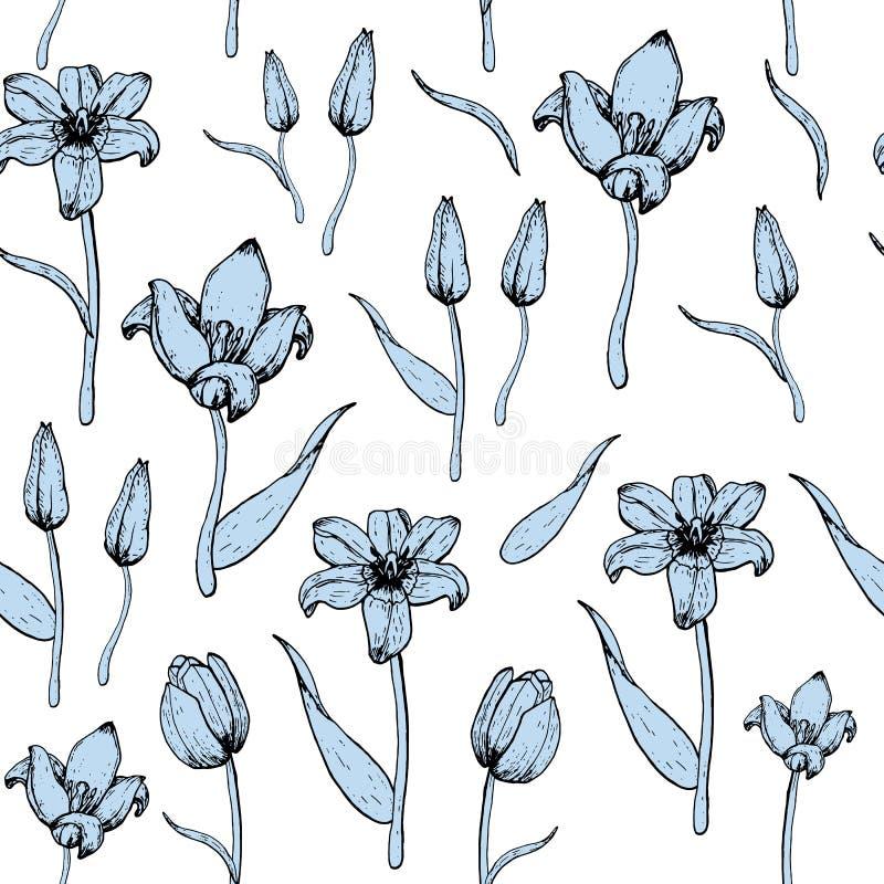 Wzór błękitni tulipany zdjęcia stock