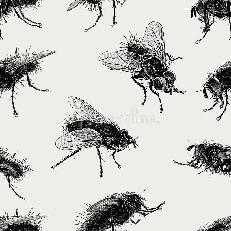 Wzór duże komarnicy ilustracja wektor