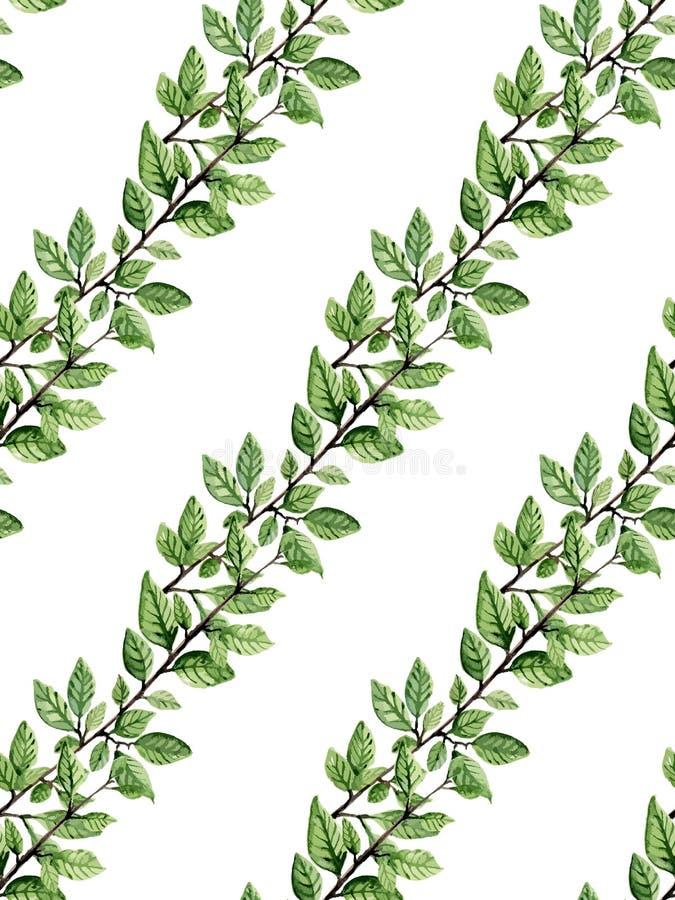 Download Wzór liści ilustracja wektor. Ilustracja złożonej z ziele - 57668997