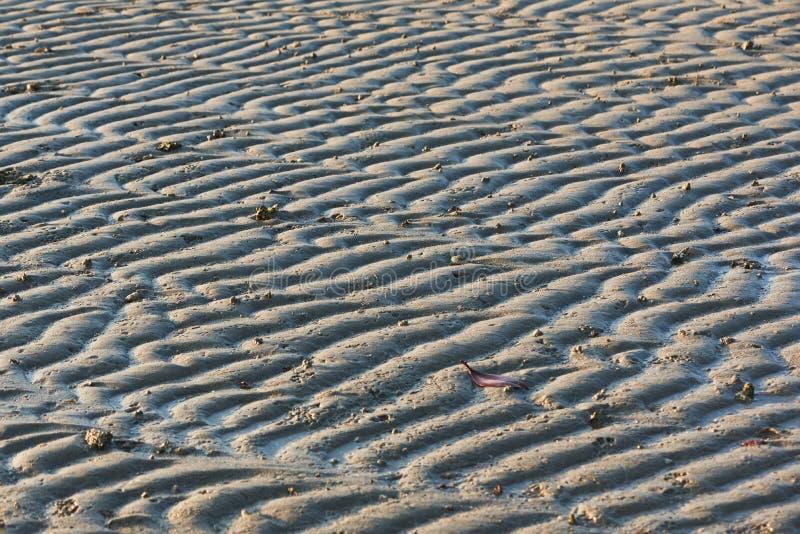 Wzór morze macha na plaży zdjęcie royalty free