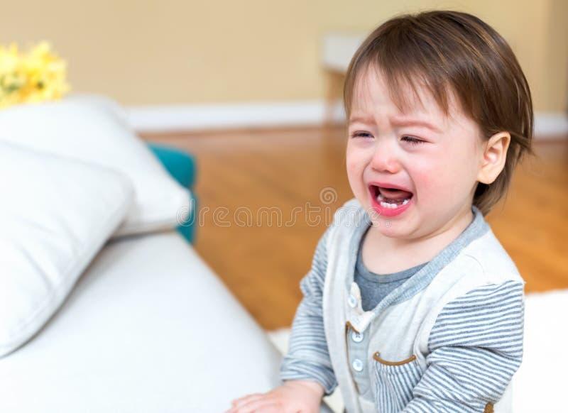 Wzburzony berbeć chłopiec płacz zdjęcie royalty free