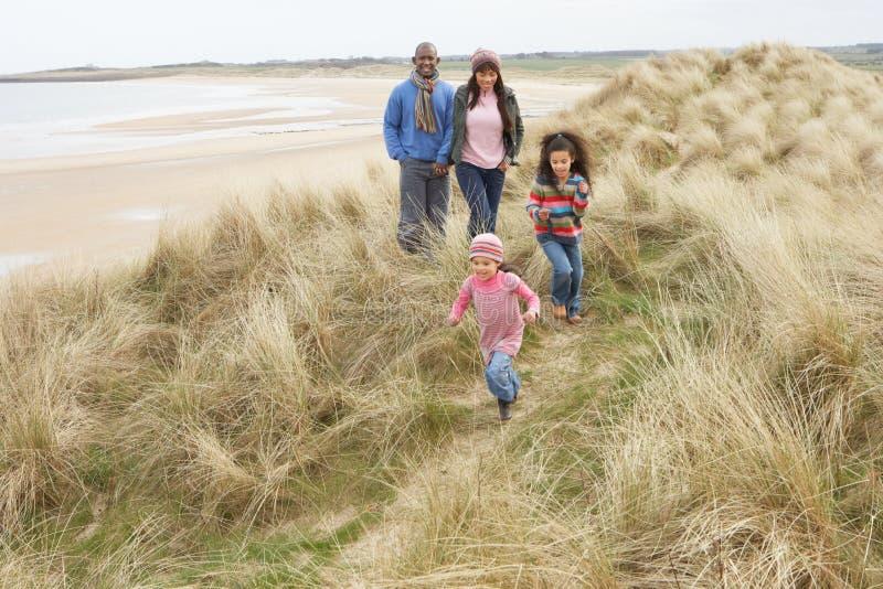 wzdłuż plażowych diun rodzinnej chodzącej zima obraz royalty free