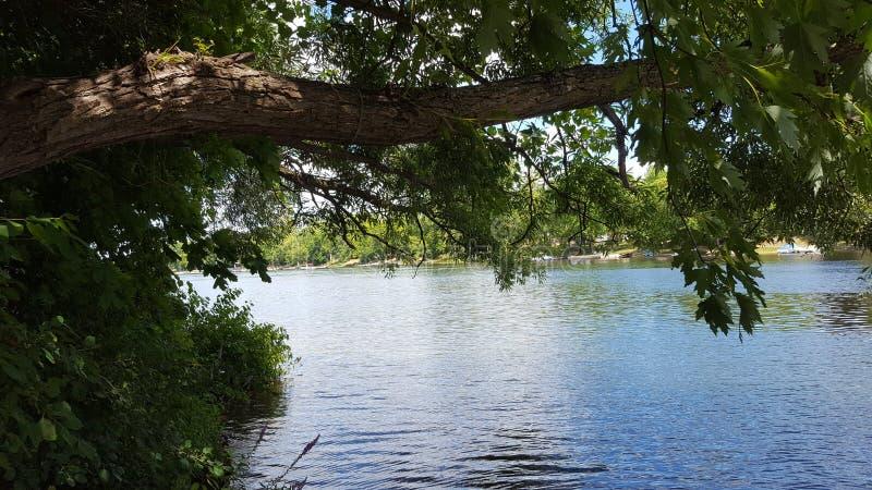 wzdłuż rzeki zdjęcie royalty free