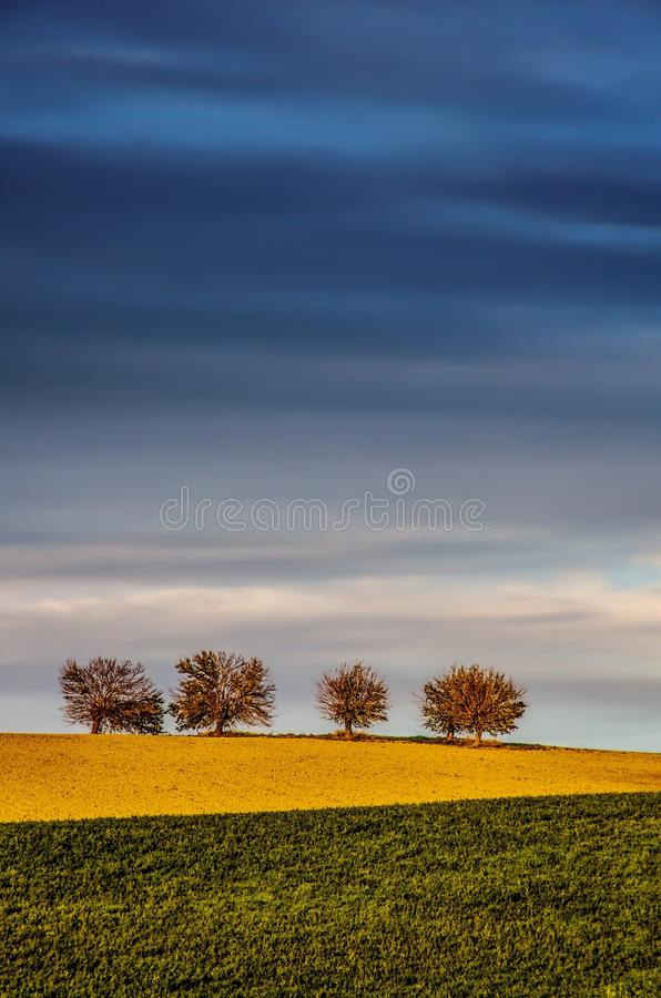 Wzgórza i drzewa fotografia stock