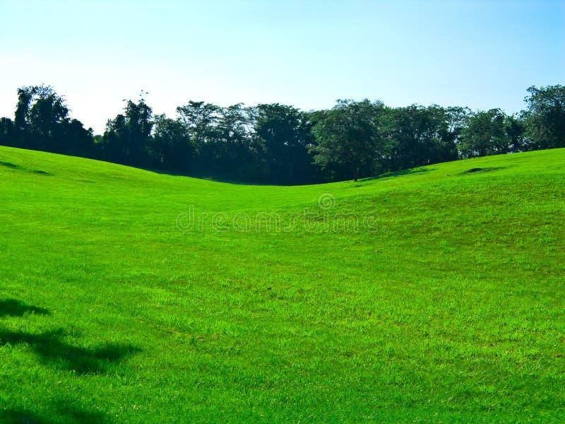 wzgórza krajobrazu zdjęcia royalty free