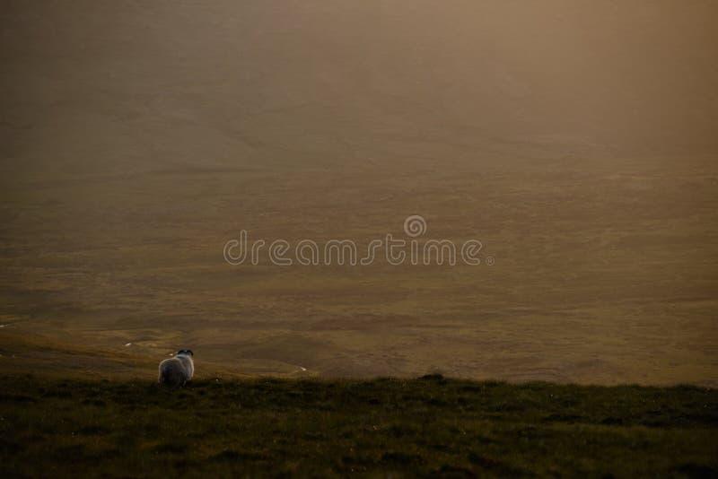 Wzgórza Quiraing, Szkocja zdjęcie stock