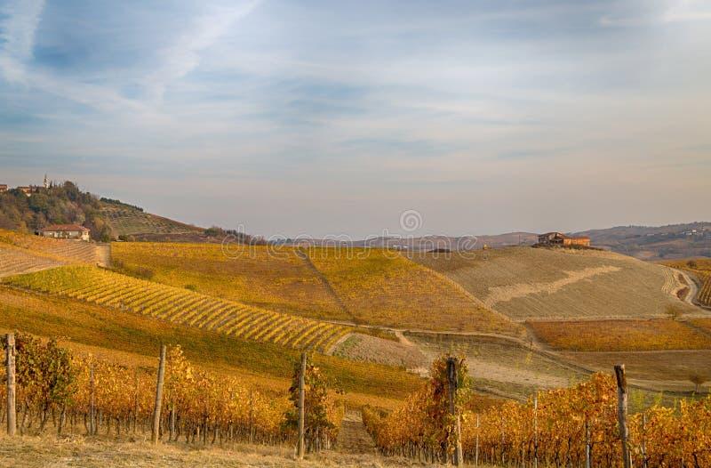 Wzgórza winnicy w jesieni w Podgórskim Piemonte, Włochy obraz stock