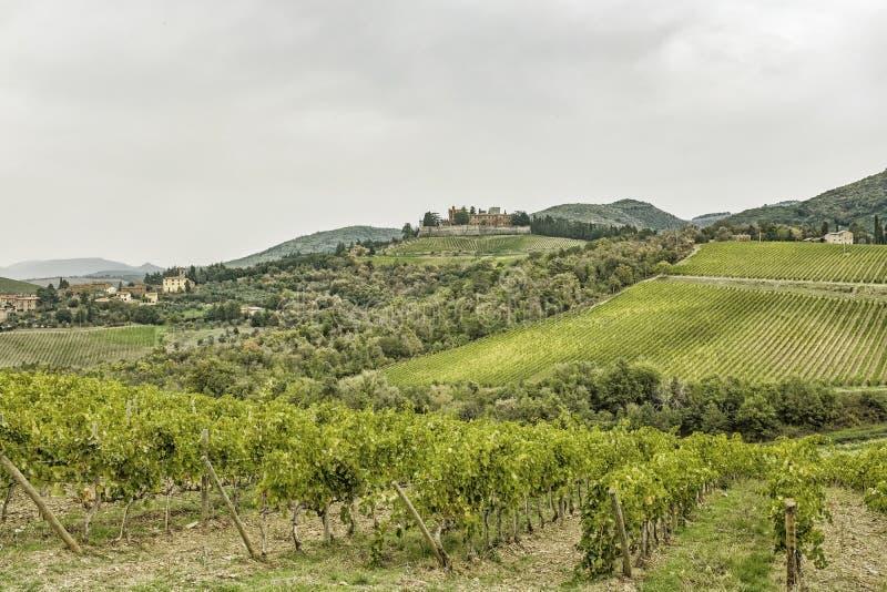 Wzgórza z winnicami i grodowy Brolio na deszczowym dniu w jesieni zdjęcie royalty free
