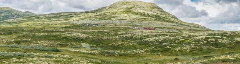 Wzgórza zakrywają z żółtym mech Widok od obywatela t fotografia stock