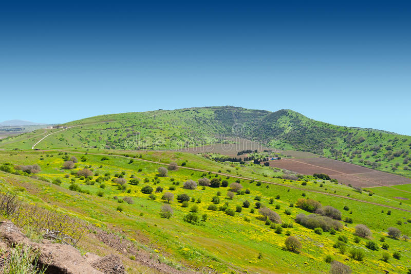 Wzgórze Golan fotografia stock