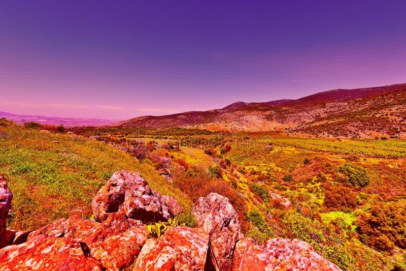 Wzgórze Golan fotografia royalty free
