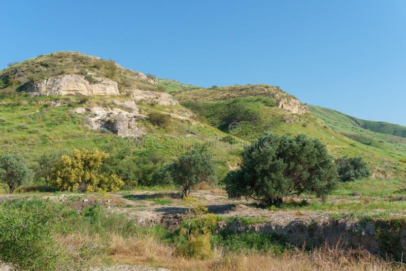 Wzgórze Golan Izrael, Marzec, - 31, 2018: Kursi parka narodowego imponująco resztki kościół i monaster zdjęcia royalty free