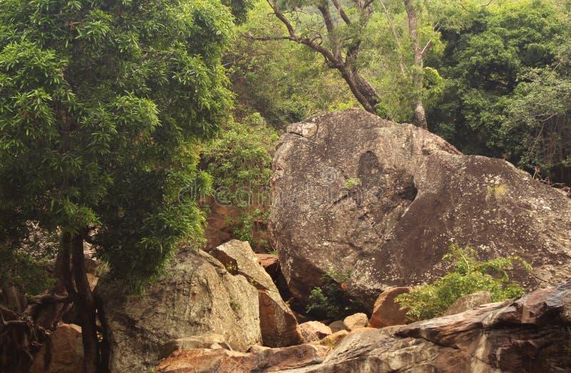 Wzgórze krajobraz obrazy stock